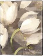 Tulip Delight II Fine-Art Print