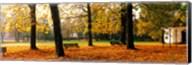 Park Bavaria Germany Fine-Art Print