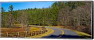 Road passing through a forest, Blue Ridge Parkway, North Carolina, USA Fine-Art Print