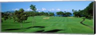 Trees , Kaanapali Golf Course, Maui, Hawaii, USA Fine-Art Print