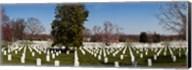 Headstones in a cemetery, Arlington National Cemetery, Arlington, Virginia, USA Fine-Art Print