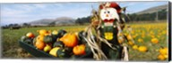 Scarecrow in Pumpkin Patch, Half Moon Bay, California (horizontal) Fine-Art Print