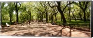 Central Park, New York City, New York State Fine-Art Print