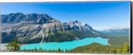 Peyto Lake at Banff National Park, Alberta, Canada Fine-Art Print