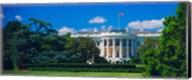 Facade of a government building, White House, Washington DC Fine-Art Print
