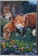 Fox Den Fine-Art Print