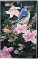 Hint Of Spring Fine-Art Print