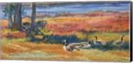 Splendor In The Marsh Fine-Art Print