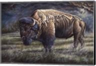 Spirit Of The Plains (Bison) Fine-Art Print