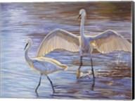 Light Dance (Snowy Egrets) Fine-Art Print