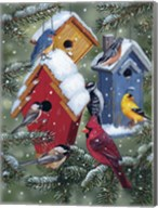 Winter Birdhouses Fine-Art Print