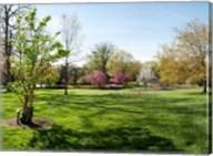 Sherwood Gardens, Baltimore, Maryland Fine-Art Print