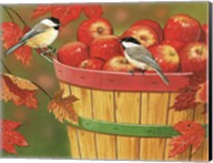 Apples In Basket With Chickadees Fine-Art Print