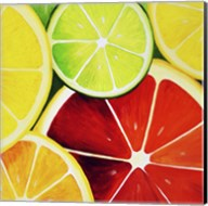 Sliced Grapefruit Fine-Art Print