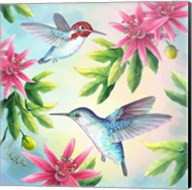 Bee Hummingbirds Fine-Art Print