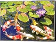 Koi Pond III Fine-Art Print