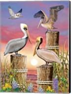 Pelicans-Vertical Fine-Art Print