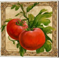 Tomatoes Fine-Art Print