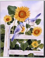 Bluejays And Sunflowers Fine-Art Print