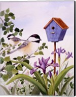Chickadees And Iris Fine-Art Print