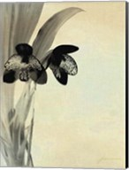 Orchid Blush Panels I Fine-Art Print