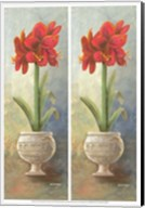 2-Up Amaryllis Vertical Fine-Art Print