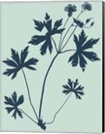 Indigo & Mint Botanical Study III Fine-Art Print