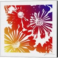 Floral Brights II Fine-Art Print