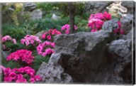 Flowers and Rocks in Traditional Chinese Garden, China Fine-Art Print