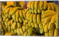 MOROCCO, Atlantic Coast, TAMRI, Market bananas Fine-Art Print