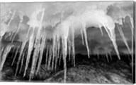 Icicles hang from an ice roof, Cuverville Island, Antarctica. Fine-Art Print