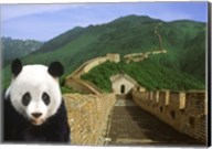 Panda at the Great Wall of China Fine-Art Print
