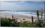 Stretches of Beach, Jeffrey's Bay, South Africa Fine-Art Print