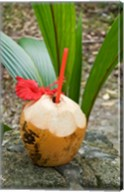 Tropical cocktail drink on Fregate Island, Seychelles Fine-Art Print