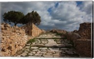 Tunisia, Carthage, Roman Villas, Ancient Architecture Fine-Art Print