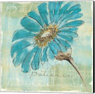 Spa Daisies II Fine-Art Print