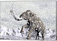 Mammoth walking through a blizzard on mountain Fine-Art Print