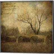 Hayrollers Fine-Art Print