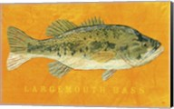 Largemouth Bass Fine-Art Print