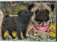 Garden Pugs Fine-Art Print