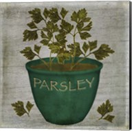 Herb Parsley Fine-Art Print