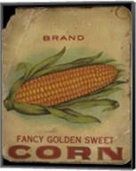 Vintage Corn Fine-Art Print