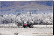Tractor and Hoar Frost, Sutton, Otago, South Island, New Zealand Fine-Art Print