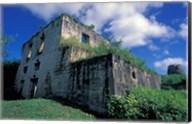 Sugar Plantation Ruins, Betty's Hope, Antigua, Caribbean Fine-Art Print