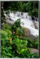Rainforest waterfall, Serra da Bocaina NP, Parati, Brazil (vertical) Fine-Art Print