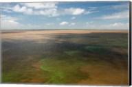 Brazil, Amazon River, Algae bloom Fine-Art Print