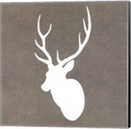 Buck I Fine-Art Print
