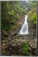 Puerto Rico, El Yunque, La Mina Waterfalls Fine-Art Print