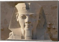 Ramesses II, New Kingdom, Temple of Luxor, Egypt Fine-Art Print
