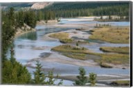 Rivers in Jasper National Park, Canada Fine-Art Print
